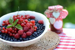Fresh berries and raspberry jam, served in the garden Royalty Free Stock Images