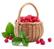 Fresh berries raspberry in wicker basket. With green leaves. On white background Royalty Free Stock Photography