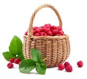 Fresh berries raspberry in wicker basket Royalty Free Stock Photography