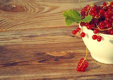 Fresh berries of red currant in a white bowl Stock Photos