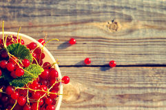 Fresh berries of red currant in a white bowl Royalty Free Stock Photo