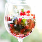 Fresh berries salad Royalty Free Stock Images