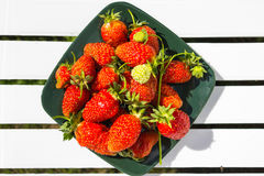Fresh berries strawberries on a dark green square plate. Royalty Free Stock Image