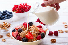 Fresh berries strawberry, raspberries and natural flakes for breakfast, Woman pouring milk into bowl with muesli top Royalty Free Stock Image