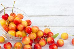 Cherry. Cherries in bowl. Fresh yellow cherry. Cherry on white wooden background. healthy food concept Stock Photography