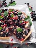 Fresh berries tart Royalty Free Stock Image
