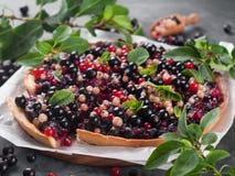 Fresh berries tart Royalty Free Stock Photography