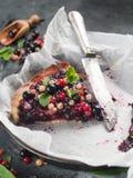 Fresh berries tart Stock Photos
