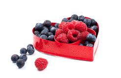 Fresh berries Valentine. Fresh raspberries and blueberries in a heart shaped red form; isolated on white Stock Photos