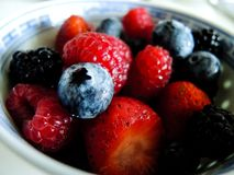 Fresh berries. Various summer berries in a bowl royalty free stock photo