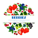 Fresh berries vector poster of berry bunch Royalty Free Stock Photos