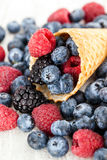 Fresh berries in waffle cone Royalty Free Stock Image