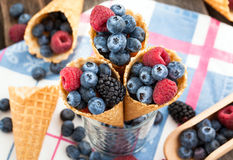 Fresh berries in waffle cone Stock Image