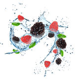 Fresh berries with water splash. Royalty Free Stock Photos