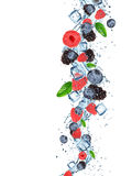 Fresh berries with water splash. Stock Photos