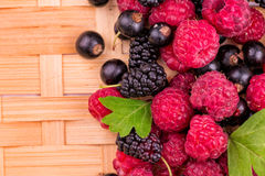 Fresh berries on a wicker backgound. Fresh raspberries, balckcurrents, mulberries on wicker backgound Stock Photos