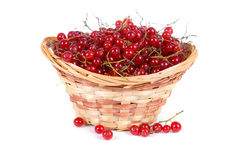 Fresh berries in a wicker basket Stock Photos
