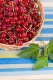 Fresh berries in a wicker basket Stock Images