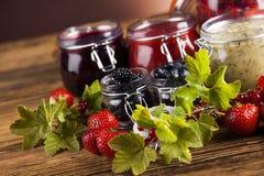 Fresh berries and wild berry jam Stock Photography