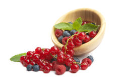 Fresh berries in wood bowl isolated Stock Photography