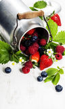 Fresh Berries on Wooden Background. Stock Photography