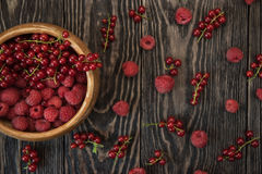 Fresh berries on wooden table. Fresh berries raspberry, red currant and plums on wooden table Stock Image