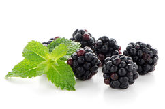 Fresh berry blackberry Royalty Free Stock Photography