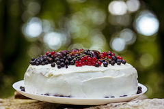 Fresh berry cake Royalty Free Stock Image