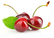 Fresh berry cherry with green leaf Royalty Free Stock Photos