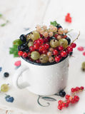 Fresh berry Royalty Free Stock Photo