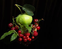 fresh berry cuts Stock Photography