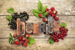 Fresh Berry Fruit Stock Photography