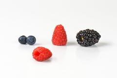 Fresh berry fruit Stock Images