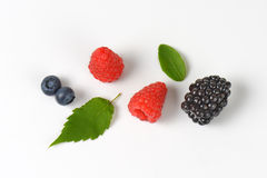 Fresh berry fruit Stock Image
