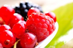 Fresh berry fruits Royalty Free Stock Photos