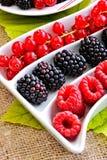 Fresh berry fruits Royalty Free Stock Photo
