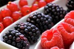 Fresh berry fruits Stock Photos