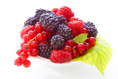 Fresh berry fruits Stock Photography