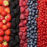 Fresh berry fruits background Royalty Free Stock Photos