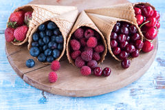 Fresh berry fruits in the cones Stock Photography