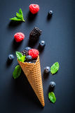 Fresh berry fruits ice cream and mint leaves Royalty Free Stock Images
