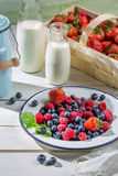 Fresh berry fruits with milk Royalty Free Stock Photography