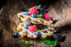Fresh berry fruits with waffles Royalty Free Stock Images