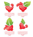 Fresh berry symbols Stock Images