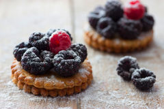 Fresh berry tartlet or cake Royalty Free Stock Photos