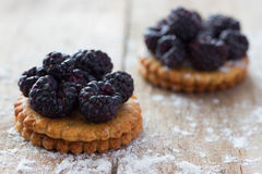 Fresh berry tartlet or cake Stock Images