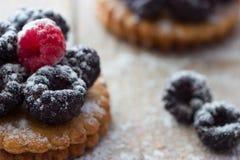 Fresh berry tartlet or cake Royalty Free Stock Photo