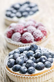 Fresh berry tarts Stock Photo