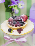 Fresh berry tarts filled with custard, raspberry, blueberry, powdered sugar and blackberry delicious dessert. stock image