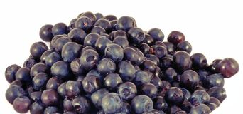 Fresh berrys Stock Photo